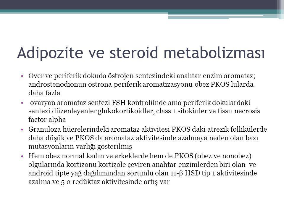 Adipozite ve steroid metabolizması