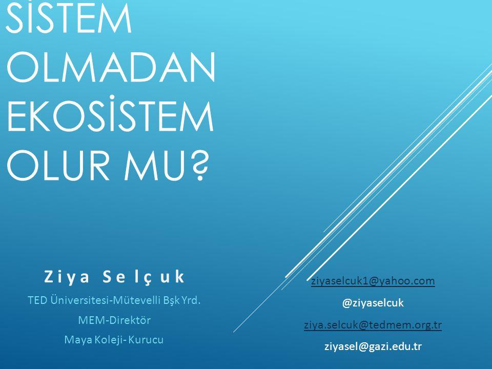 TED Üniversitesi-Mütevelli Bşk Yrd.