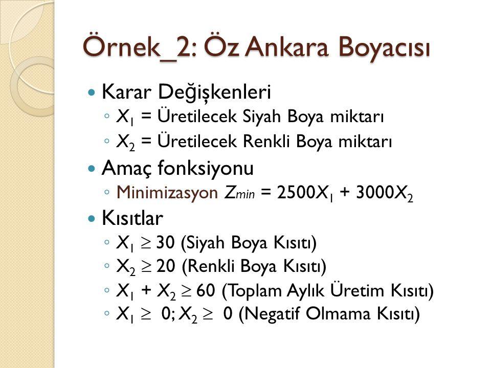 Örnek_2: Öz Ankara Boyacısı