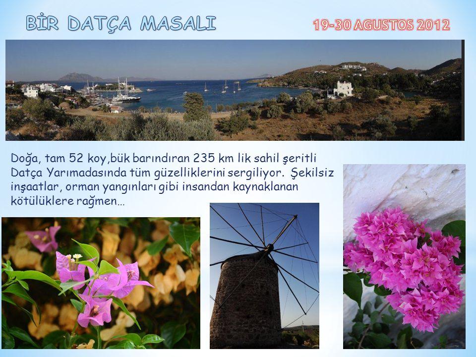 BİR DATÇA MASALI 19-30 AGUSTOS 2012