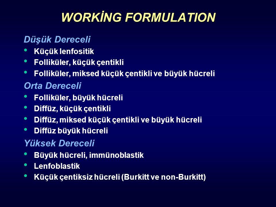 WORKİNG FORMULATION Düşük Dereceli Orta Dereceli Yüksek Dereceli