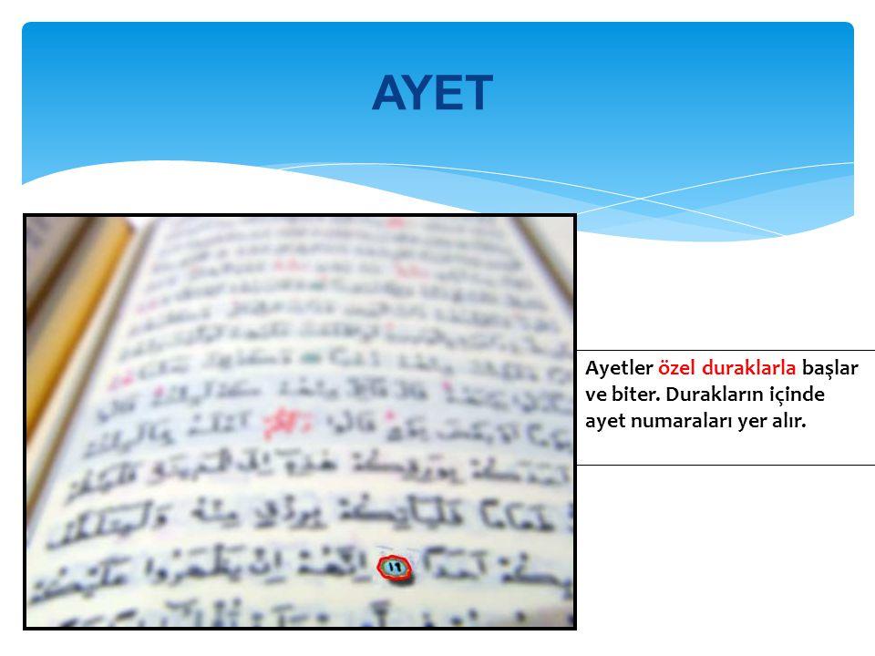 AYET Ayetler özel duraklarla başlar ve biter. Durakların içinde ayet numaraları yer alır.
