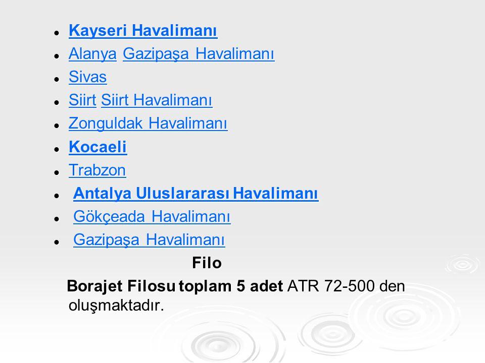 Kayseri Havalimanı Alanya Gazipaşa Havalimanı. Sivas. Siirt Siirt Havalimanı. Zonguldak Havalimanı.