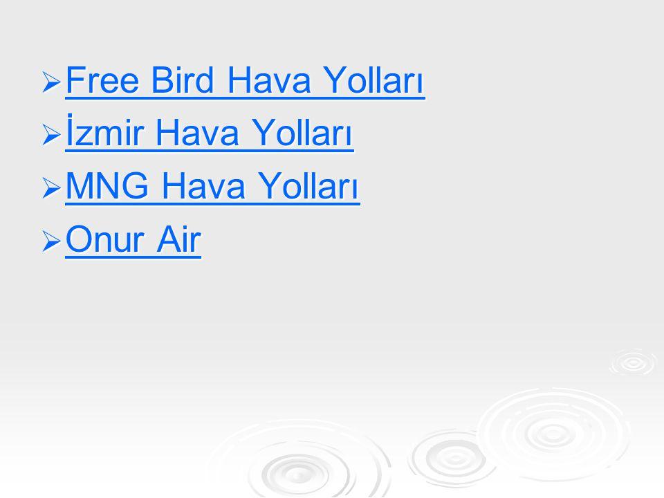 Free Bird Hava Yolları İzmir Hava Yolları MNG Hava Yolları Onur Air