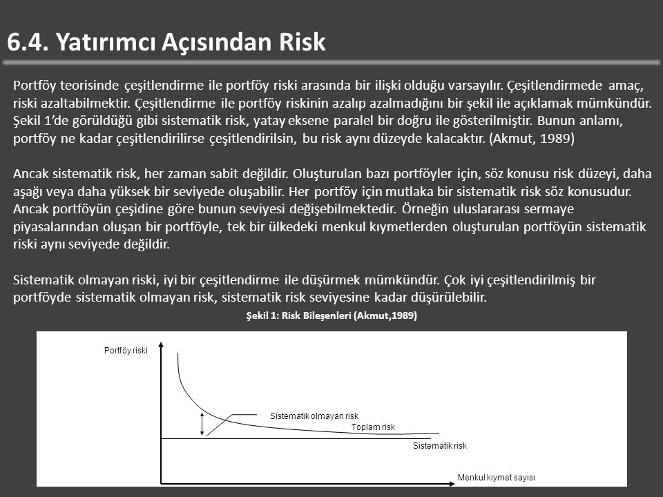 6.4. Yatırımcı Açısından Risk