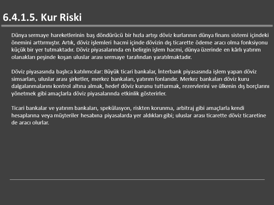 6.4.1.5. Kur Riski