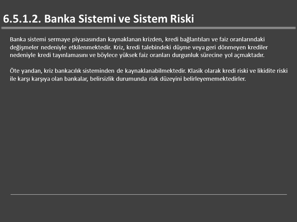 6.5.1.2. Banka Sistemi ve Sistem Riski