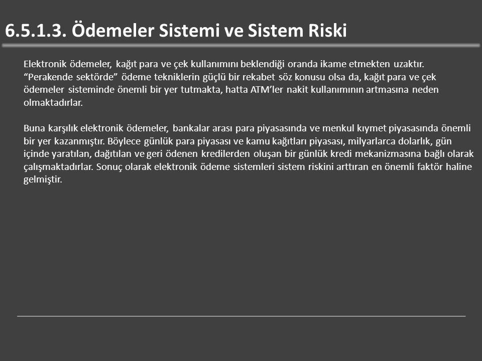 6.5.1.3. Ödemeler Sistemi ve Sistem Riski