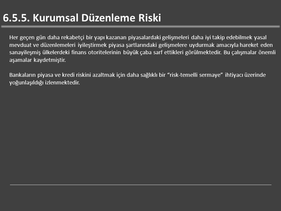 6.5.5. Kurumsal Düzenleme Riski