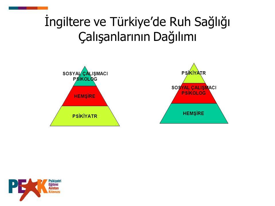 İngiltere ve Türkiye'de Ruh Sağlığı Çalışanlarının Dağılımı