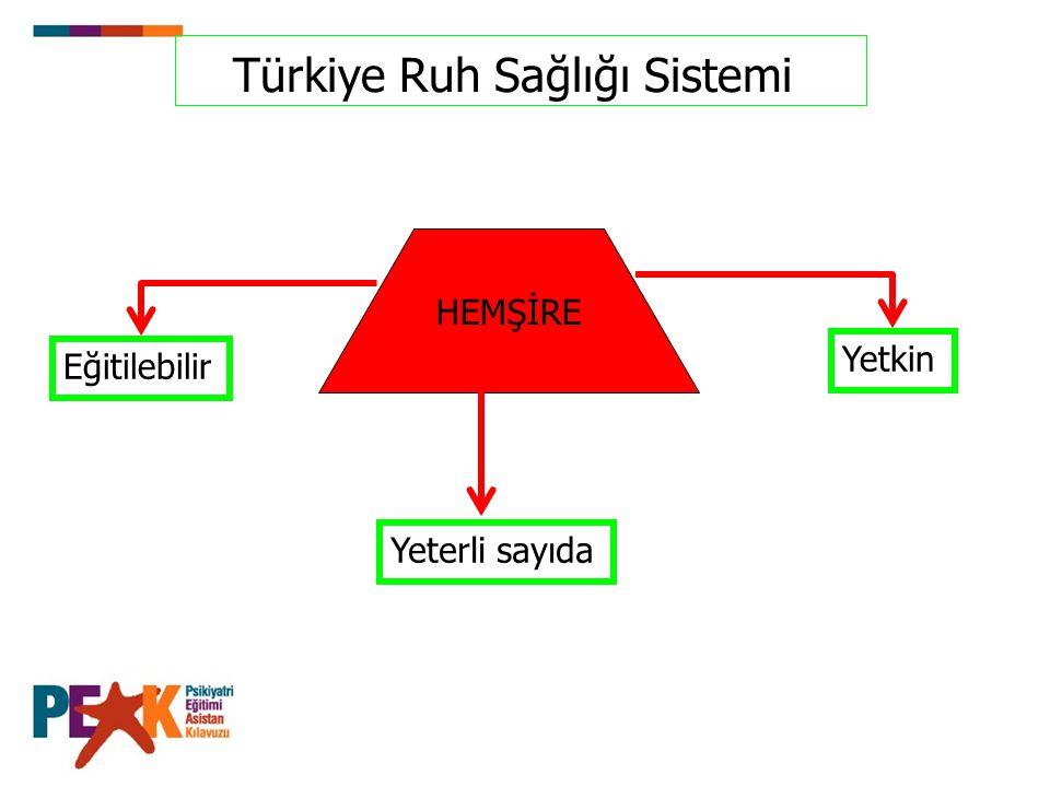 Türkiye Ruh Sağlığı Sistemi