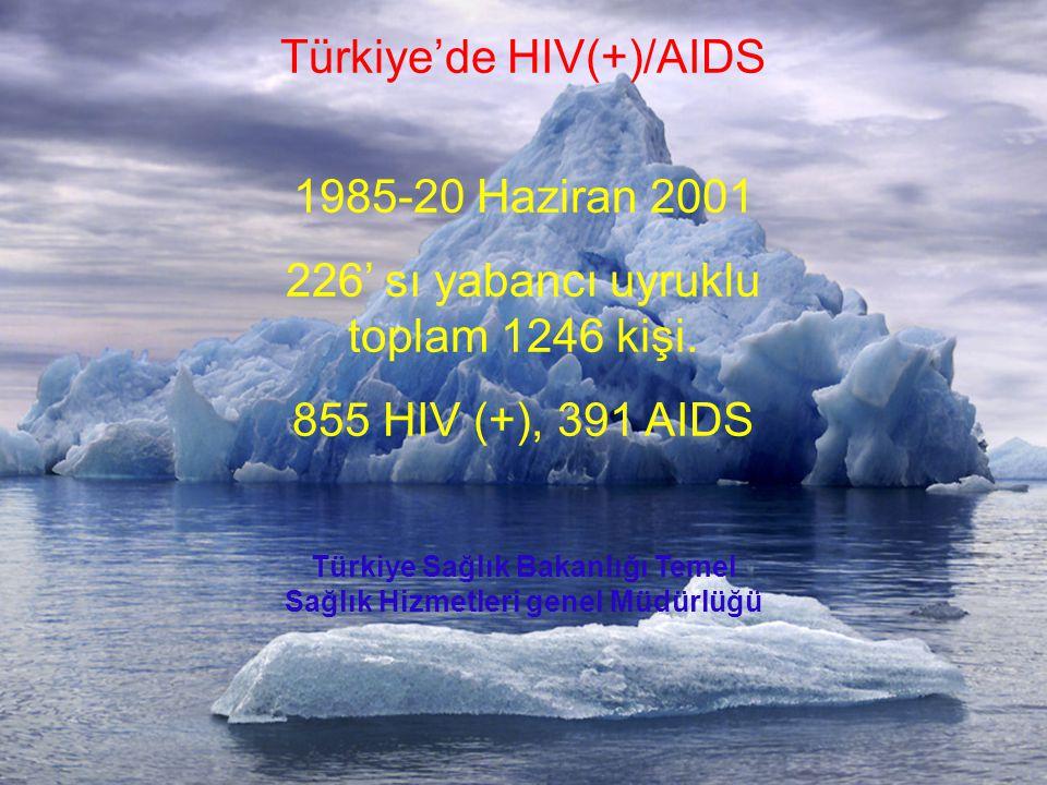 Türkiye Sağlık Bakanlığı Temel Sağlık Hizmetleri genel Müdürlüğü