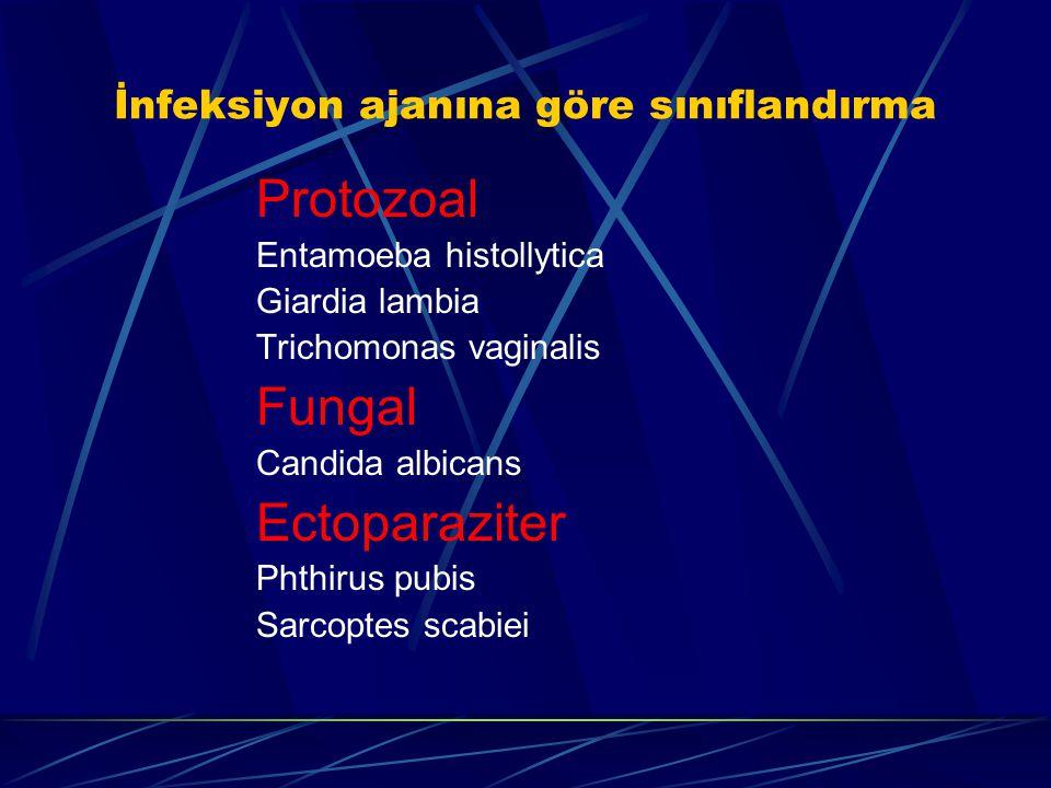 İnfeksiyon ajanına göre sınıflandırma
