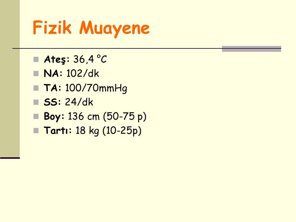 Fizik Muayene Ateş: 36,4 °C NA: 102/dk TA: 100/70mmHg SS: 24/dk