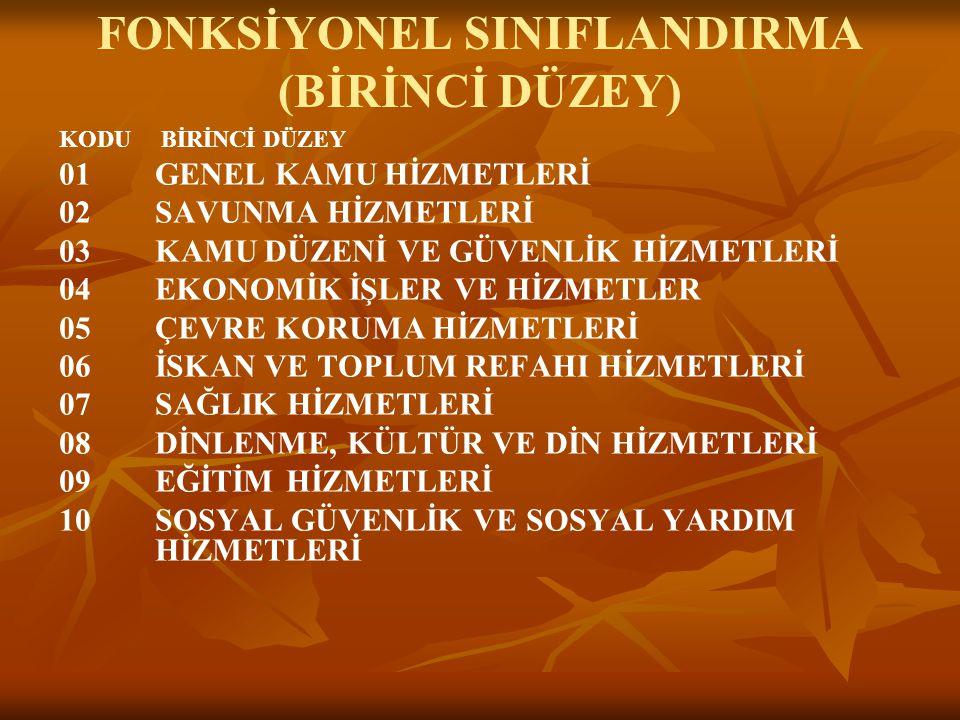 FONKSİYONEL SINIFLANDIRMA (BİRİNCİ DÜZEY)
