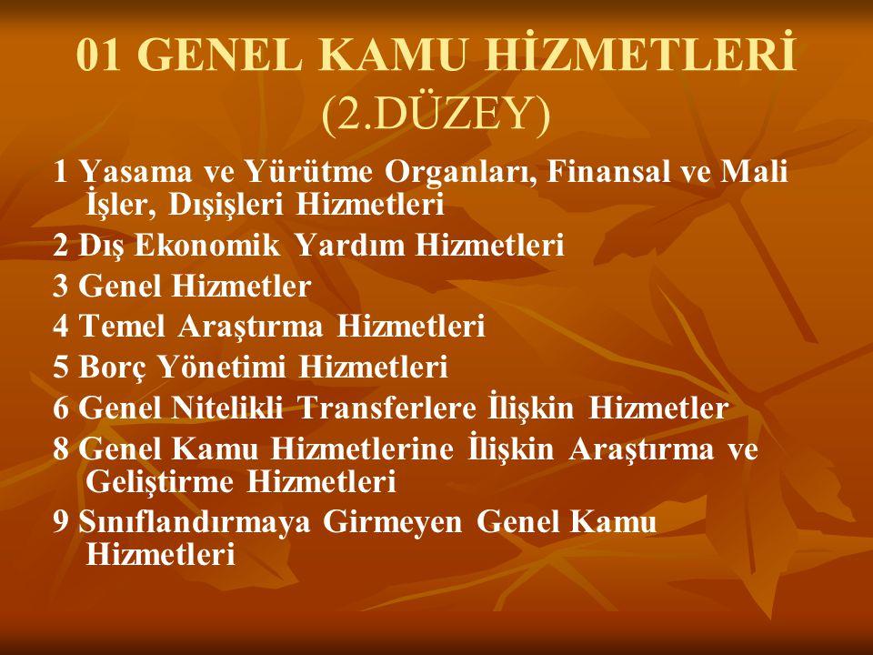 01 GENEL KAMU HİZMETLERİ (2.DÜZEY)