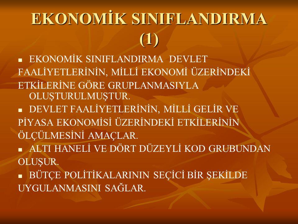 EKONOMİK SINIFLANDIRMA (1)