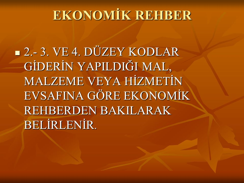 EKONOMİK REHBER 2.- 3. VE 4.