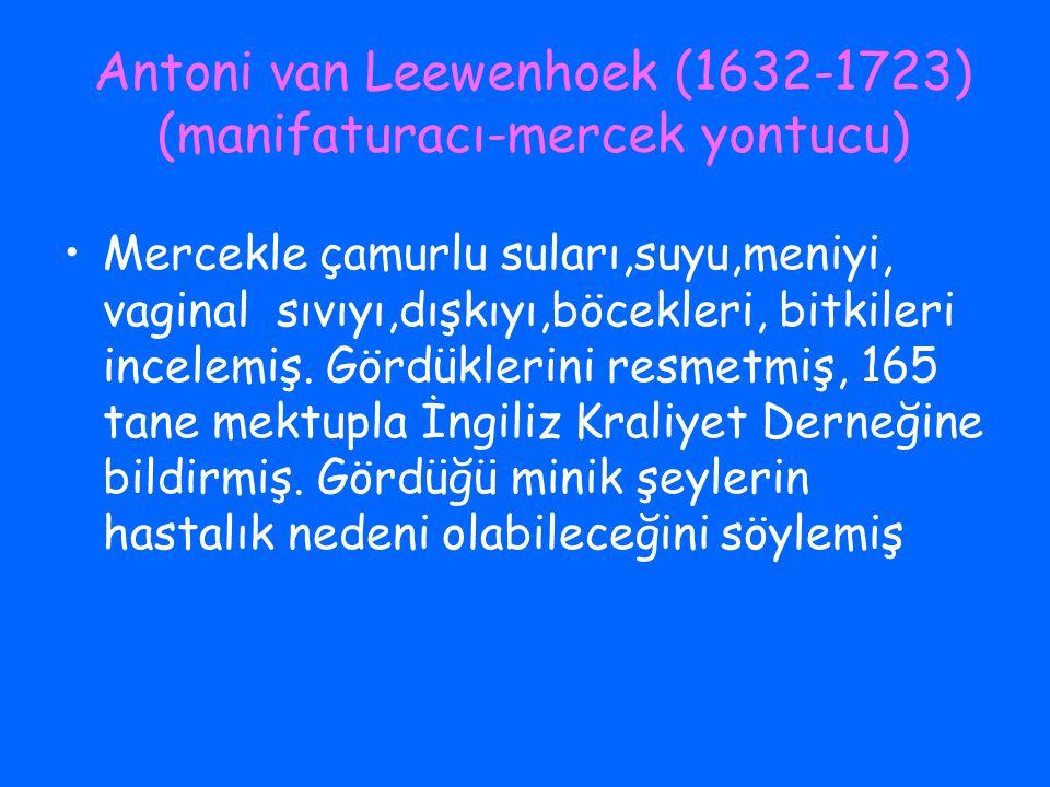 Antoni van Leewenhoek (1632-1723) (manifaturacı-mercek yontucu)