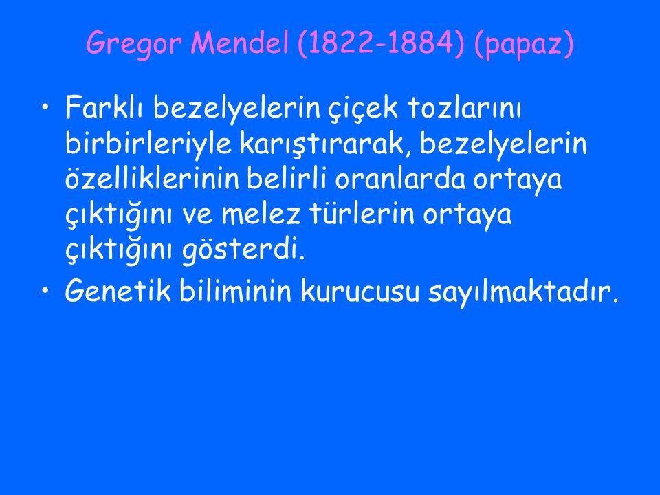 Gregor Mendel (1822-1884) (papaz)