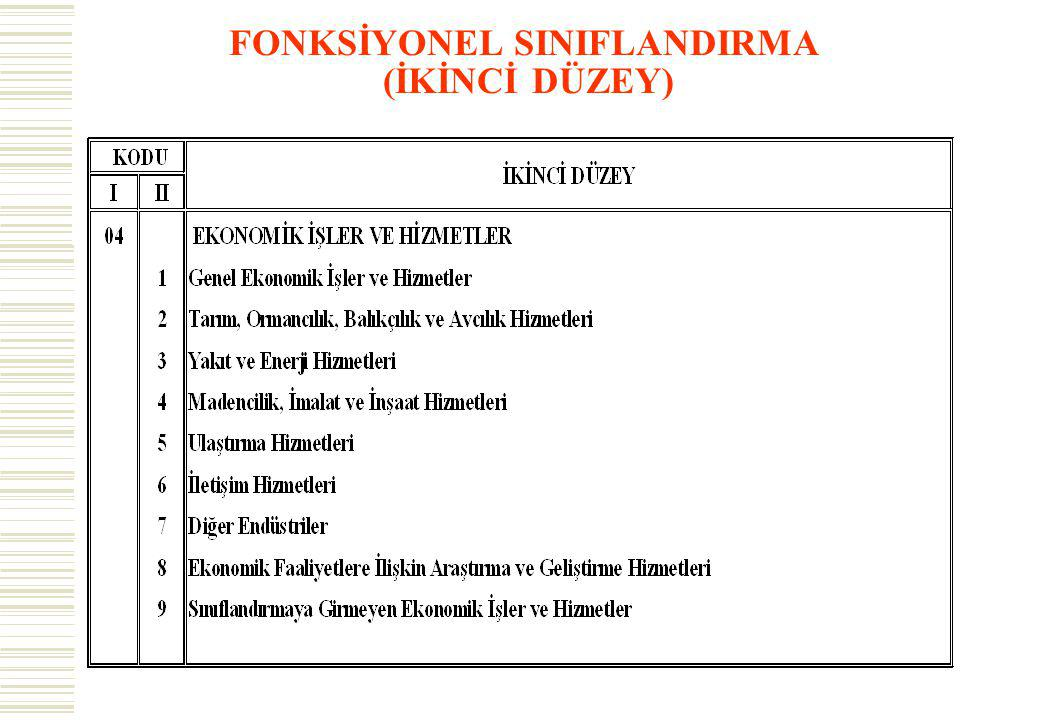 FONKSİYONEL SINIFLANDIRMA (İKİNCİ DÜZEY)