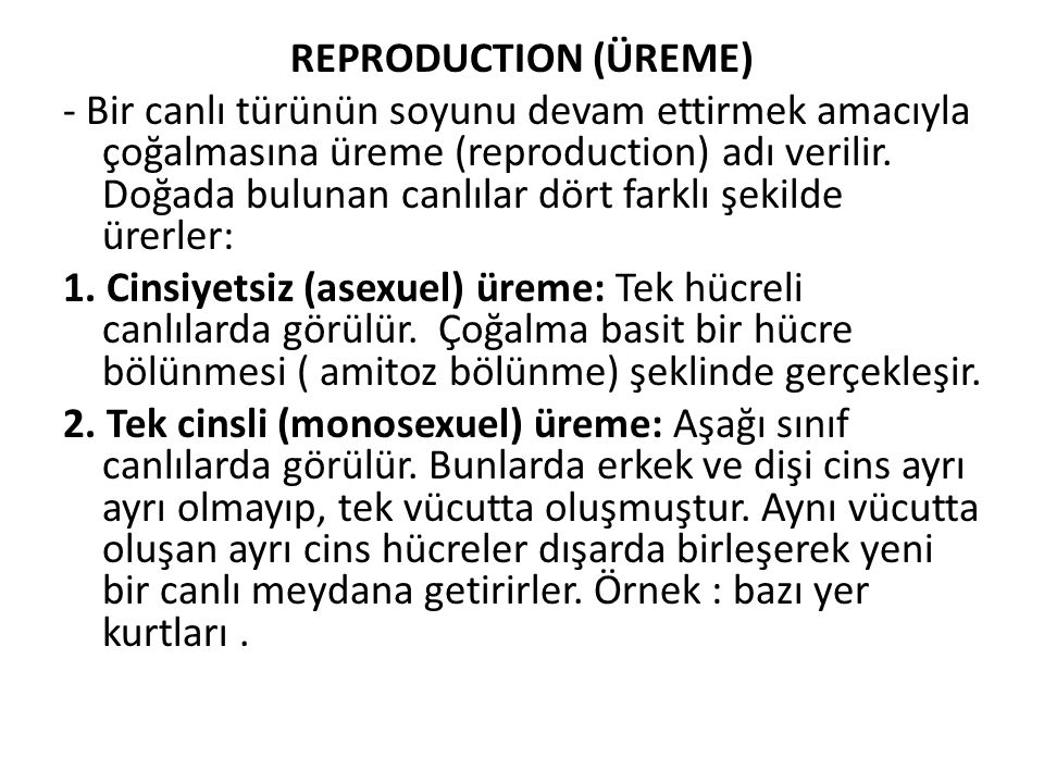 REPRODUCTION (ÜREME)