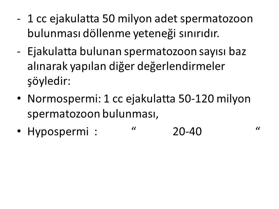1 cc ejakulatta 50 milyon adet spermatozoon bulunması döllenme yeteneği sınırıdır.