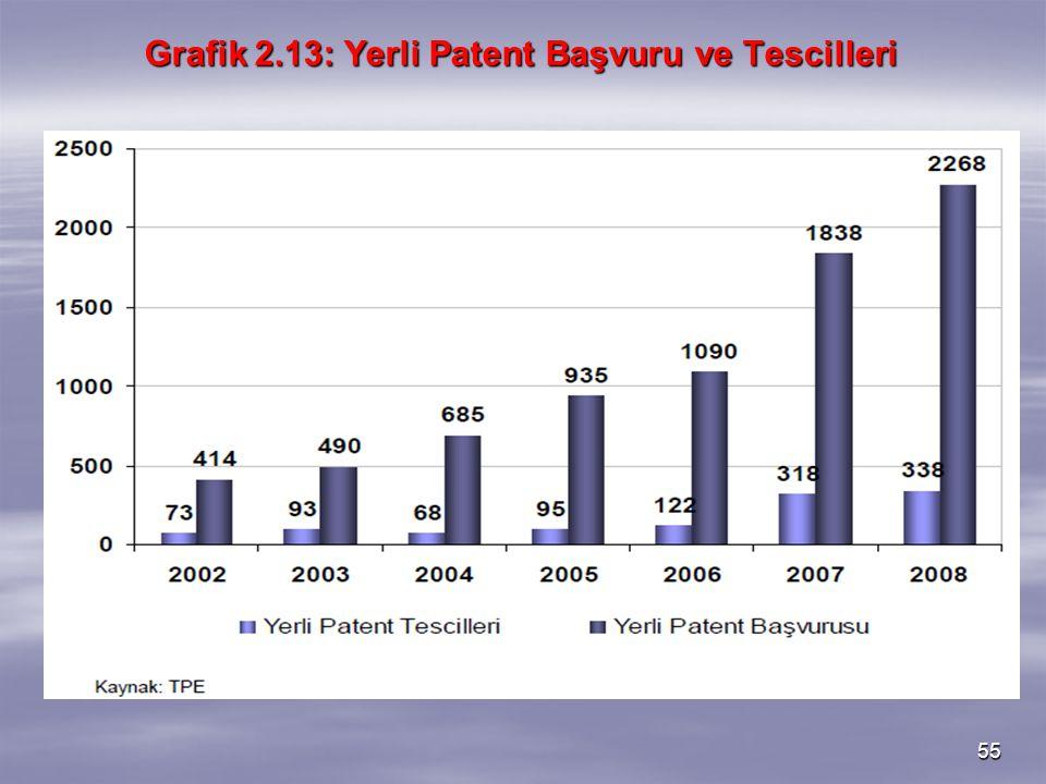 Grafik 2.13: Yerli Patent Başvuru ve Tescilleri