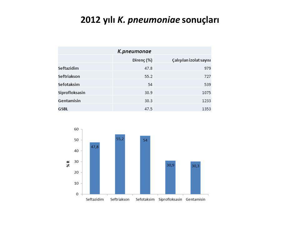 2012 yılı K. pneumoniae sonuçları
