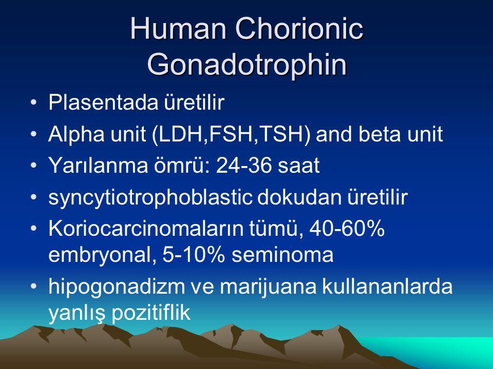 Human Chorionic Gonadotrophin