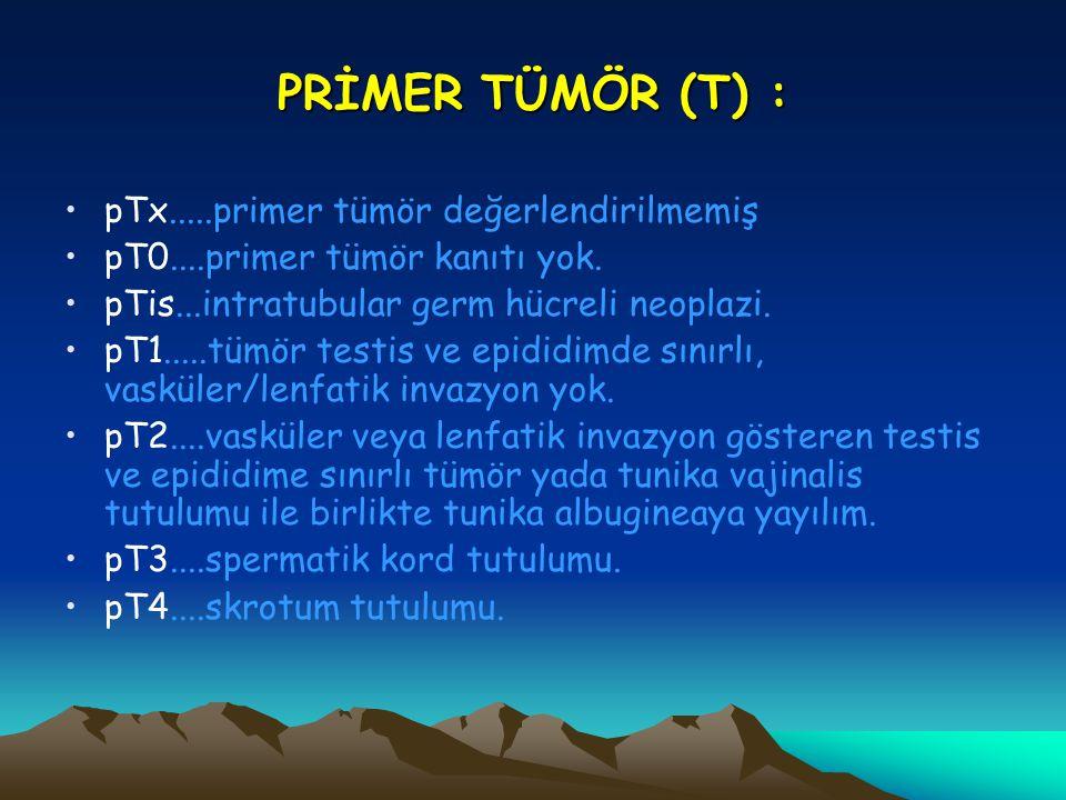 PRİMER TÜMÖR (T) : pTx.....primer tümör değerlendirilmemiş