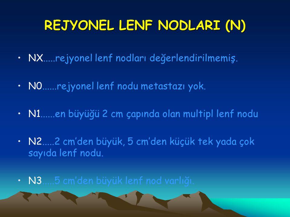 REJYONEL LENF NODLARI (N)