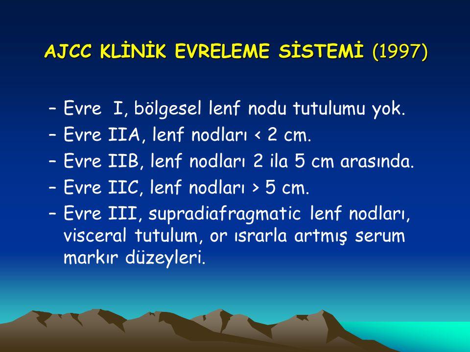 AJCC KLİNİK EVRELEME SİSTEMİ (1997)