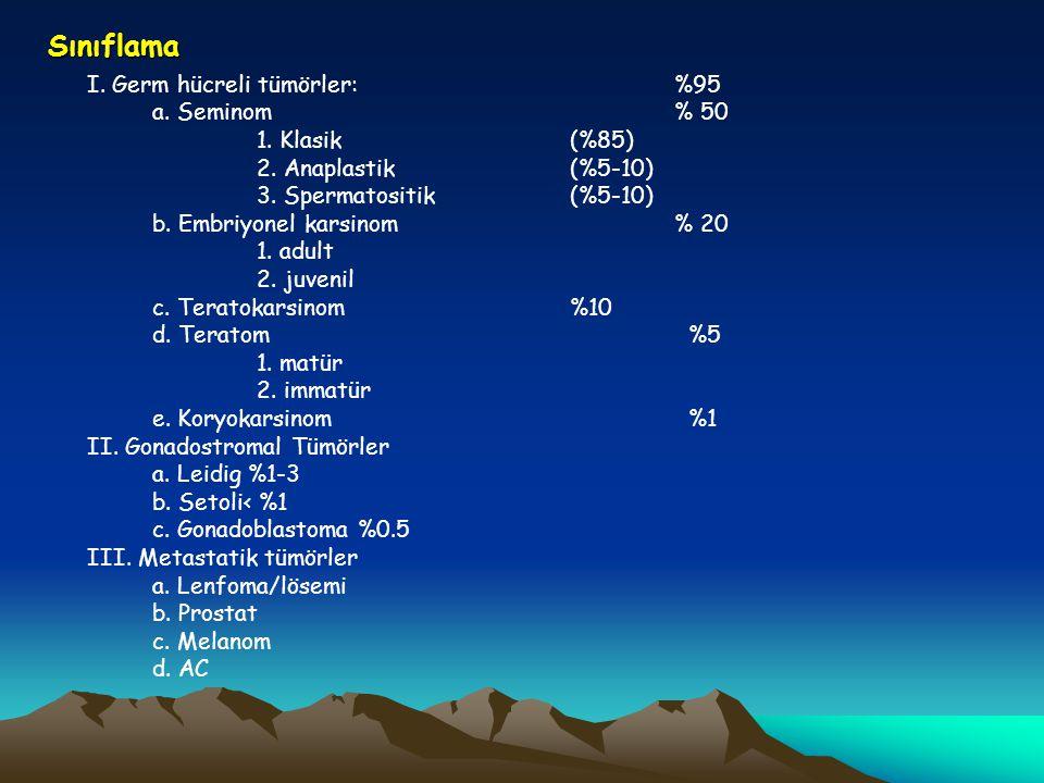 Sınıflama a. Seminom % 50 1. Klasik (%85) 2. Anaplastik (%5-10)