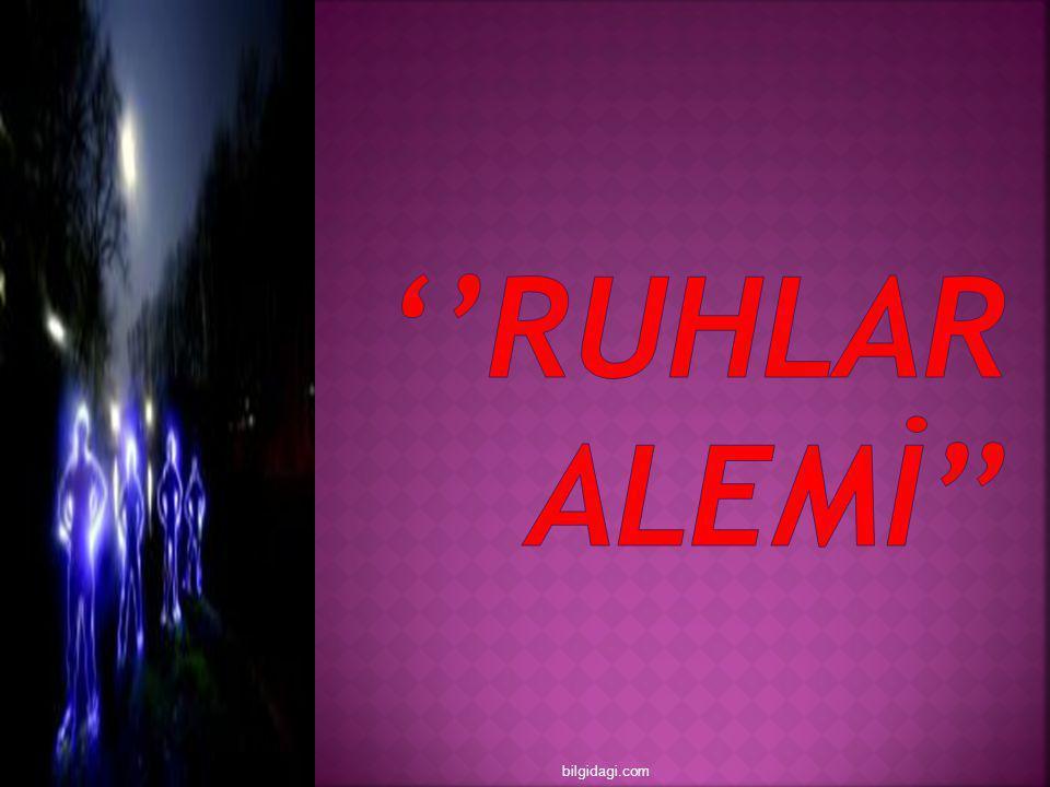 ''RUHLAR ALEMİ'' bilgidagi.com