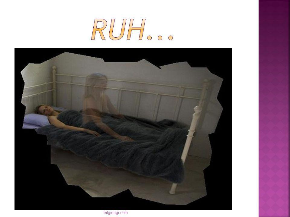 RUH... bilgidagi.com