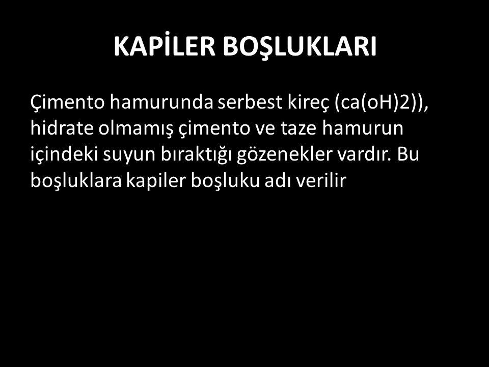 KAPİLER BOŞLUKLARI