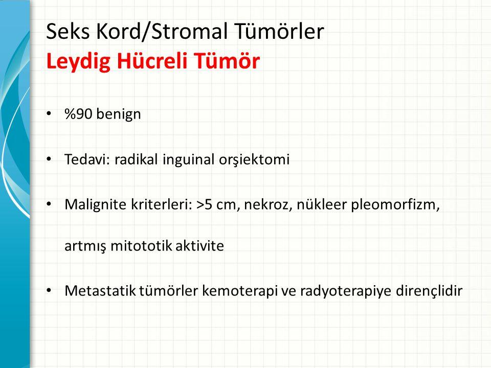 Seks Kord/Stromal Tümörler Leydig Hücreli Tümör