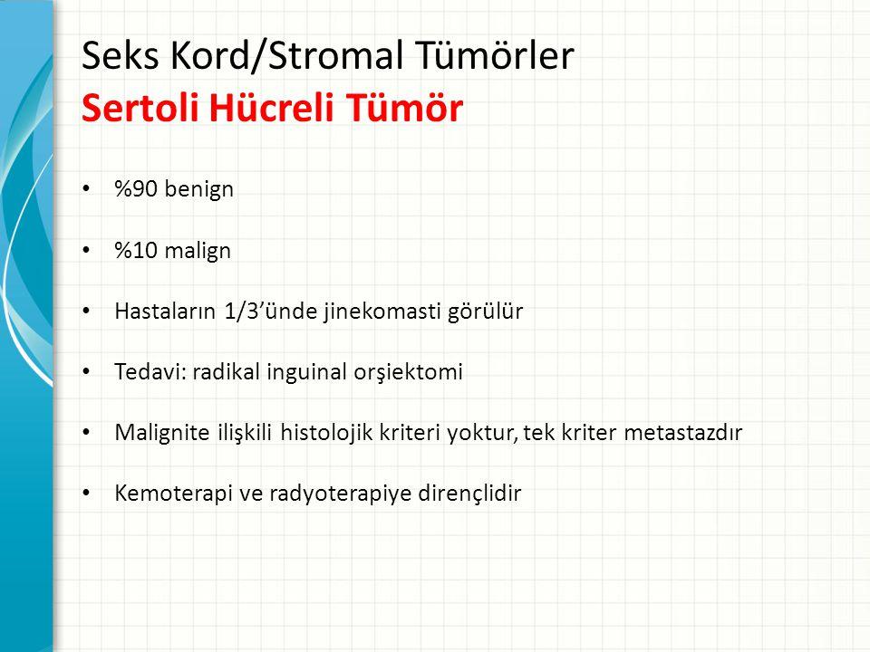 Seks Kord/Stromal Tümörler Sertoli Hücreli Tümör