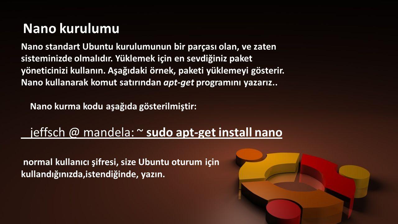 jeffsch @ mandela: ~ sudo apt-get install nano