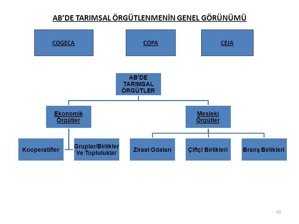 AB'DE TARIMSAL ÖRGÜTLENMENİN GENEL GÖRÜNÜMÜ