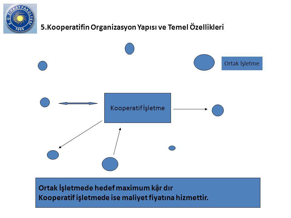 5.Kooperatifin Organizasyon Yapısı ve Temel Özellikleri
