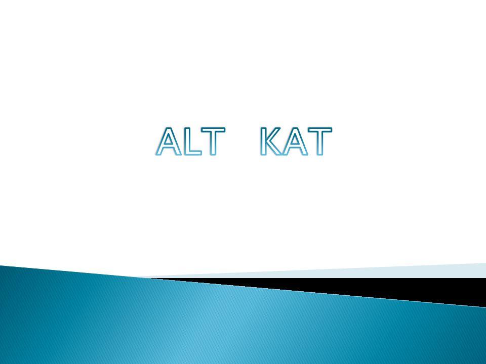 ALT KAT