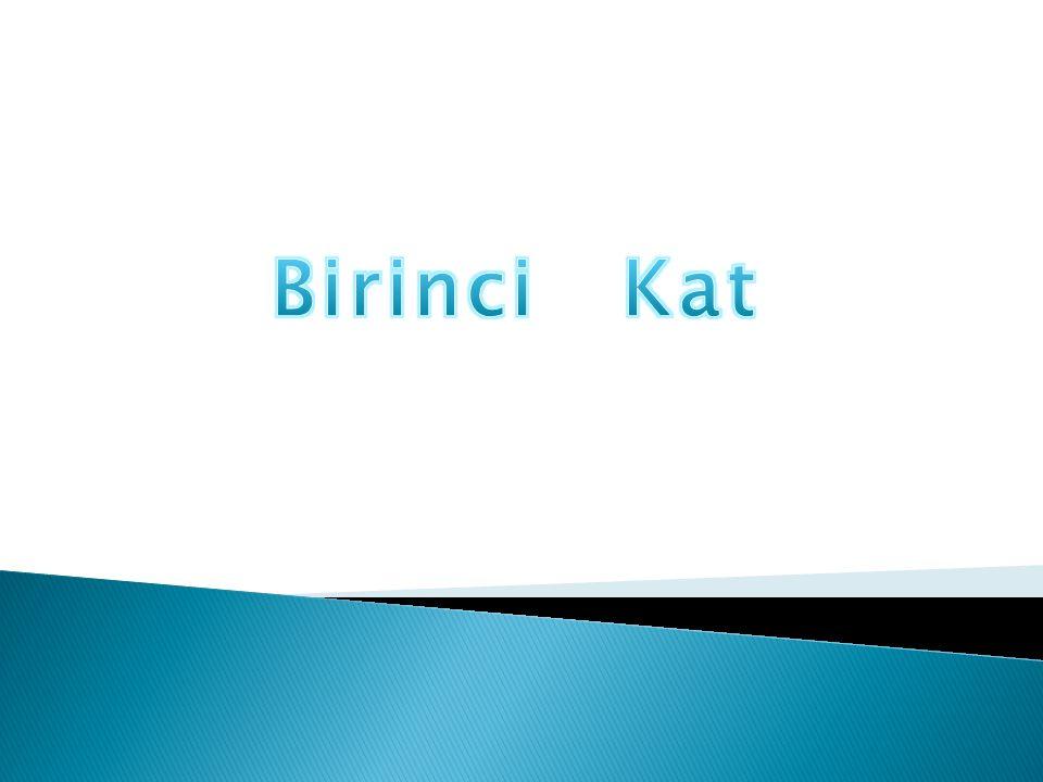 Birinci Kat