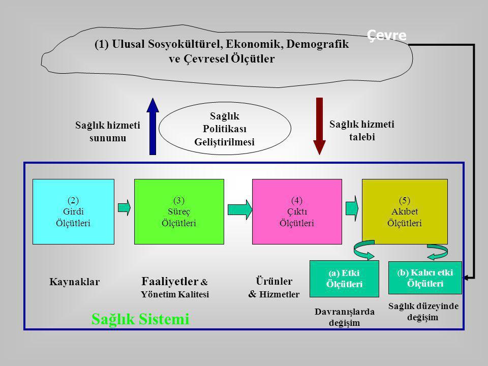 (1) Ulusal Sosyokültürel, Ekonomik, Demografik