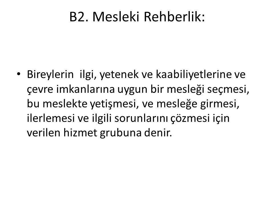 B2. Mesleki Rehberlik: