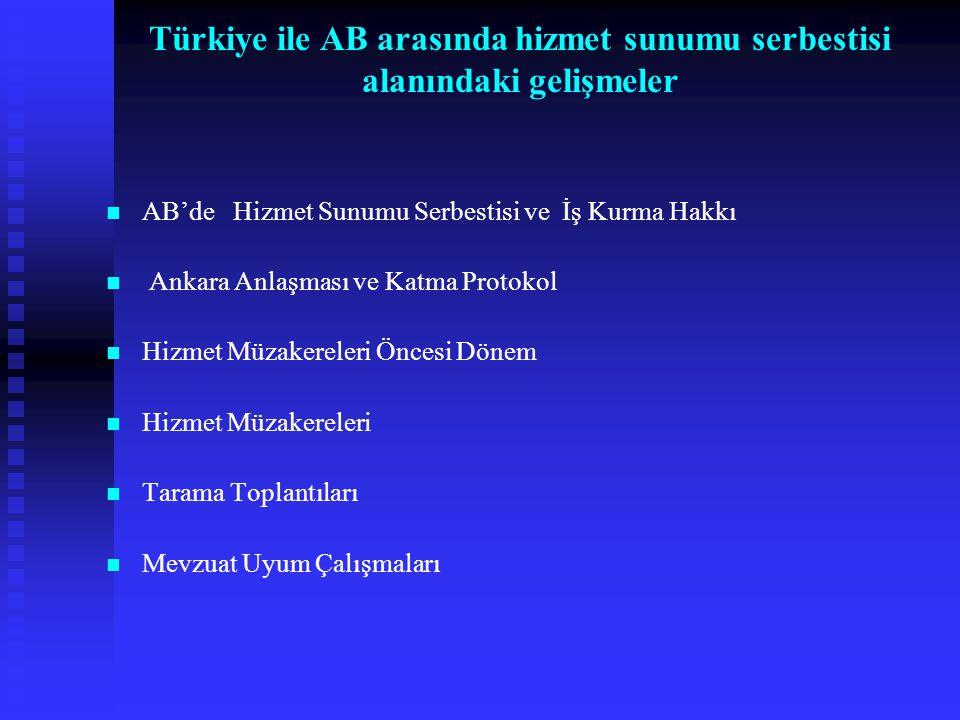 Türkiye ile AB arasında hizmet sunumu serbestisi alanındaki gelişmeler