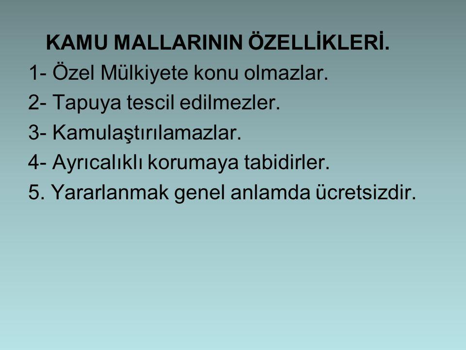 KAMU MALLARININ ÖZELLİKLERİ.