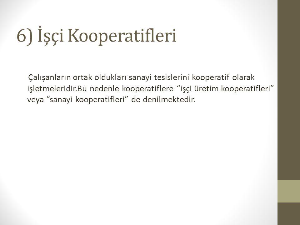 6) İşçi Kooperatifleri