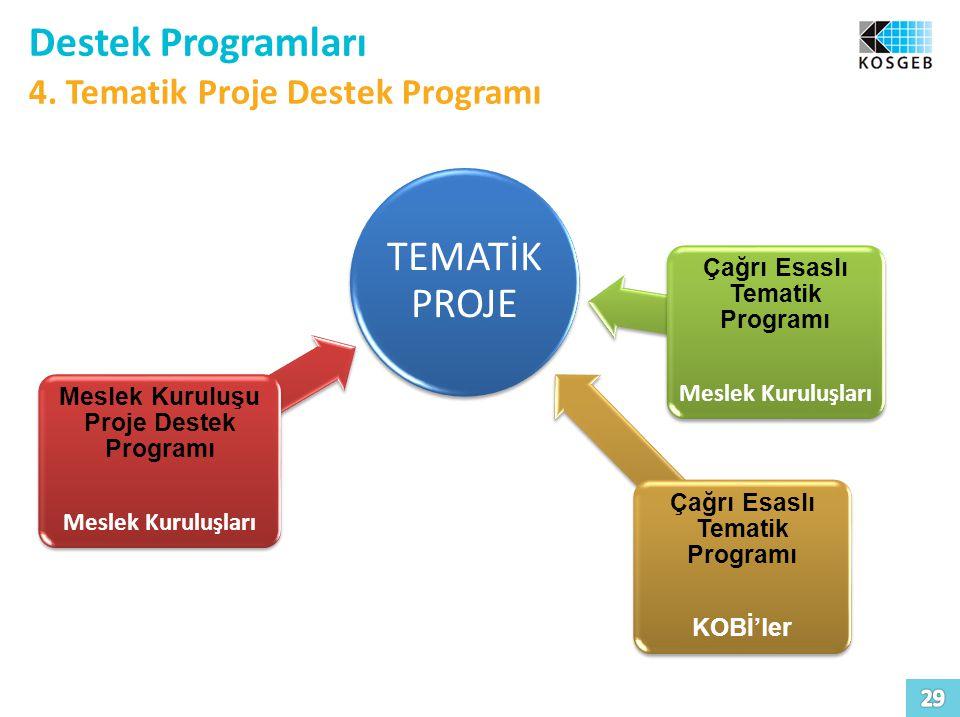 Meslek Kuruluşu Proje Destek Programı Çağrı Esaslı Tematik Programı